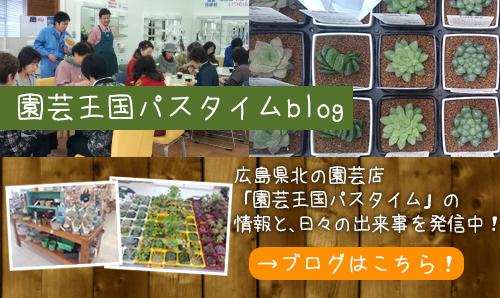 園芸王国パスタイムblog