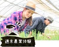 週末農業体験